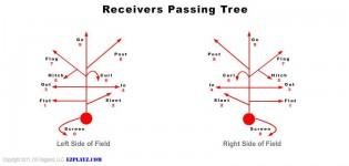 passing tree 315x150 - Passing Tree