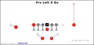 Pro Left X Go