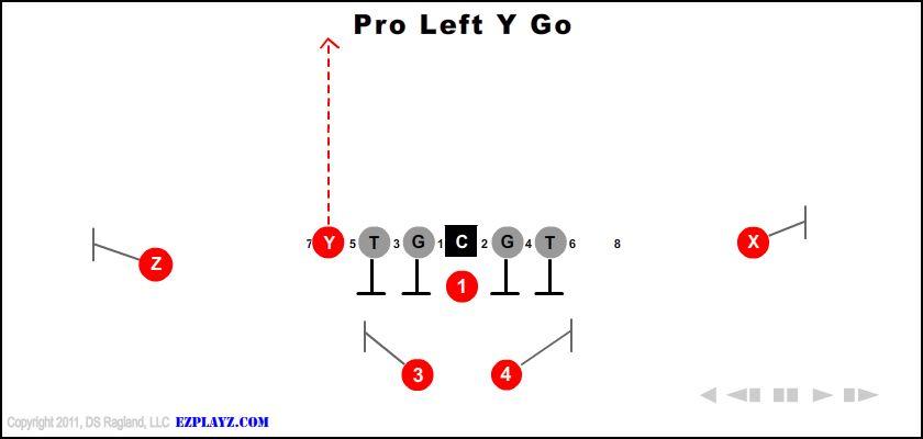 Pro Left Y Go
