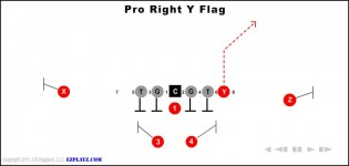 Pro Right Y Flag