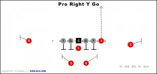 pro right y go 315x150 - Pro Right Y Go