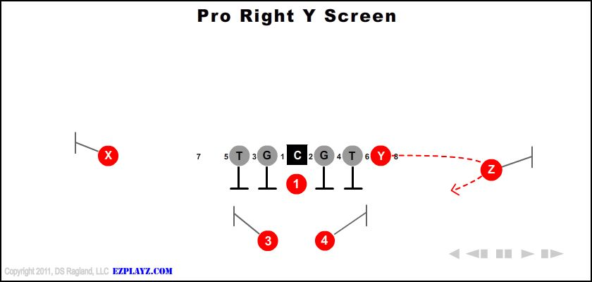 pro right y screen - Pro Right Y Screen