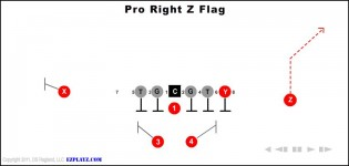 Pro Right Z Flag