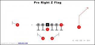 Pro Right Z Flag