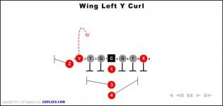 Wing Left Y Curl
