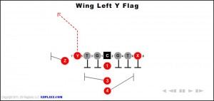 wing-left-y-flag