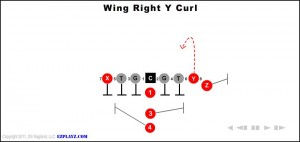 wing-right-y-curl