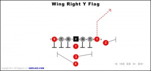 wing-right-y-flag