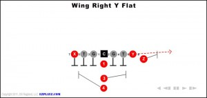 wing-right-y-flat