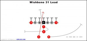 wishbone-31-lead---copy