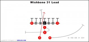 Wishbone 31 Lead