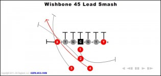 wishbone 45 lead smash 315x150 - Wishbone 45 Lead Smash