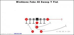 wishbone-fake-48-sweep-y-flat