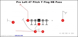 pro-left-47-pitch-y-flag-hb-pass.jpg