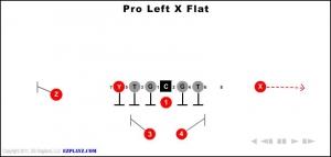pro-left-x-flat.jpg