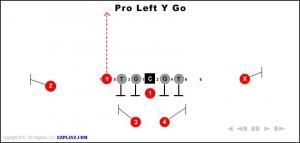 pro-left-y-go.jpg
