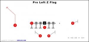 pro left z flag 300x143 - pro-left-z-flag.jpg