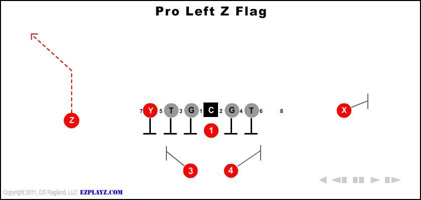 pro left z flag - Pro Left Z Flag