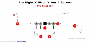 pro right x hitch y out z screen 530 300x143 - pro-right-x-hitch-y-out-z-screen-530.jpg