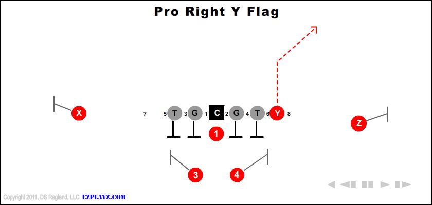 pro right y flag - Pro Right Y Flag