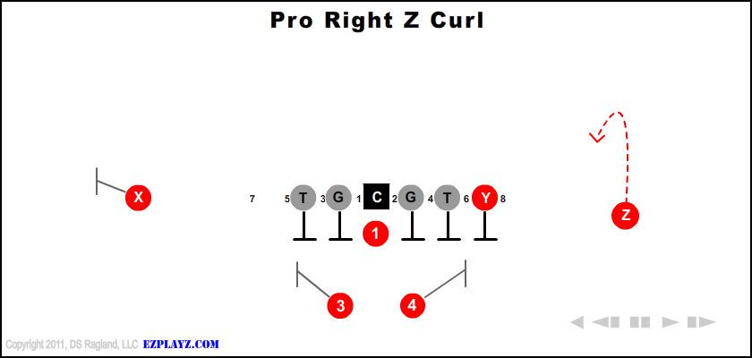 pro right z curl - Pro Right Z Curl