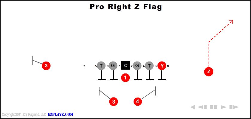 pro right z flag - Pro Right Z Flag