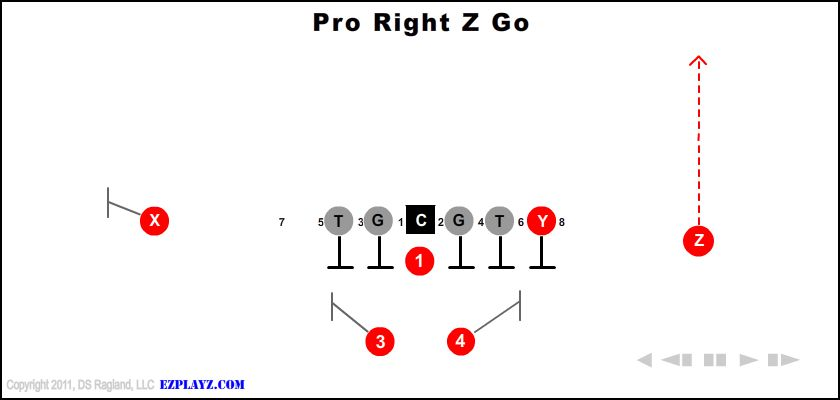 pro right z go - Pro Right Z Go