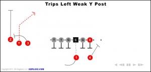 trips left weak y post 300x143 - trips-left-weak-y-post.jpg