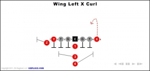 wing-left-x-curl.jpg