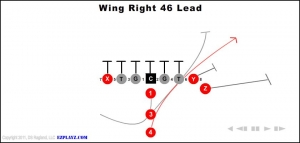 wing-right-46-lead.jpg