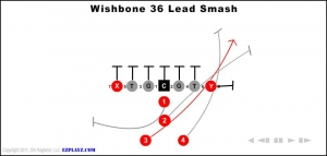 wishbone 36 lead smash 300x143 - wishbone-36-lead-smash.jpg