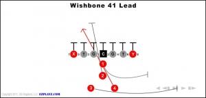 wishbone-41-lead.jpg