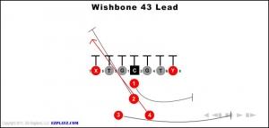 wishbone-43-lead.jpg