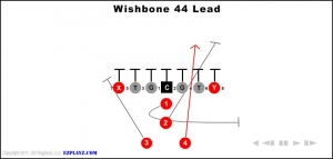 wishbone-44-lead.jpg