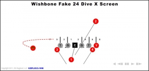 wishbone-fake-24-dive-x-screen.jpg