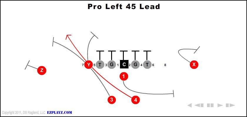 Pro Left 45 Lead