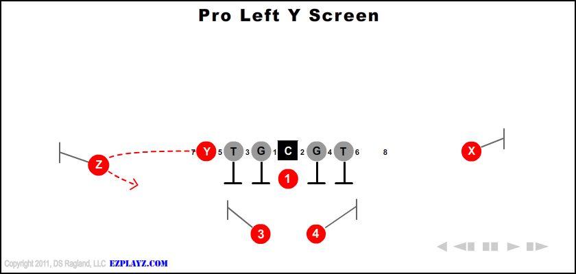 Pro Left Y Screen