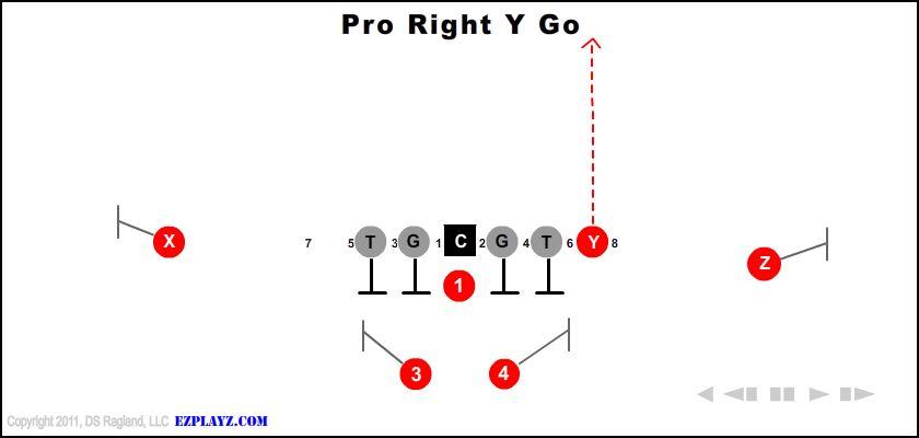 Pro Right Y Go